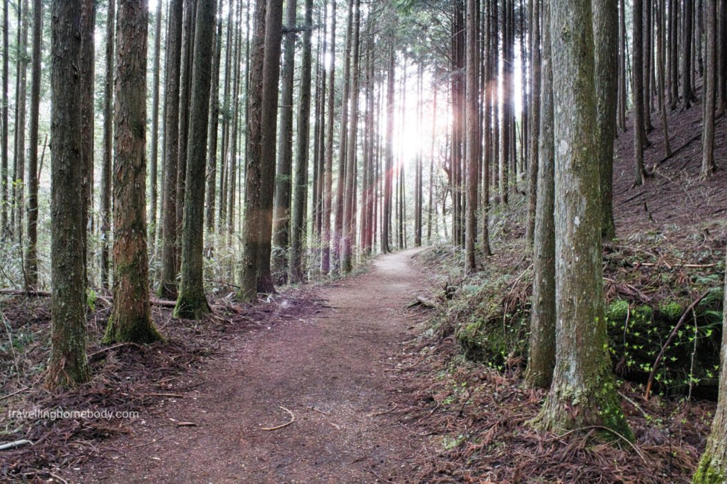 Travelling Homebody hikes the Nakasendo Way in Japan. Its beauty is revealed in this photo essay.